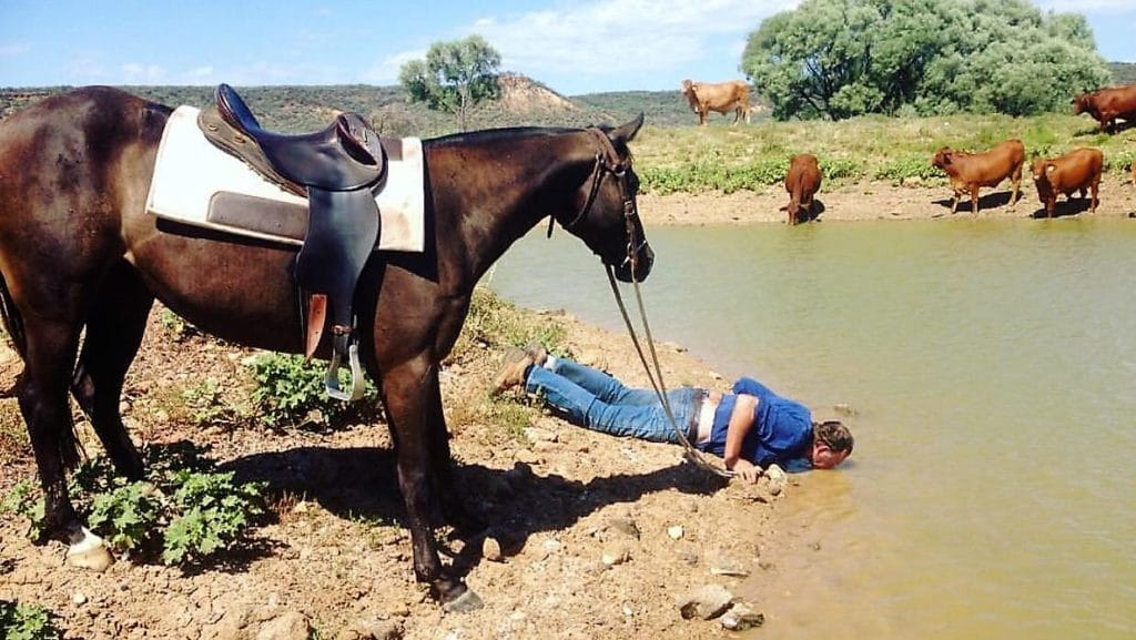 leading a horse to water that I drink as well
